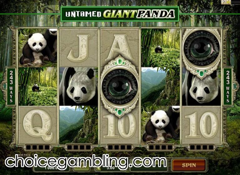 Giant panda slot machine